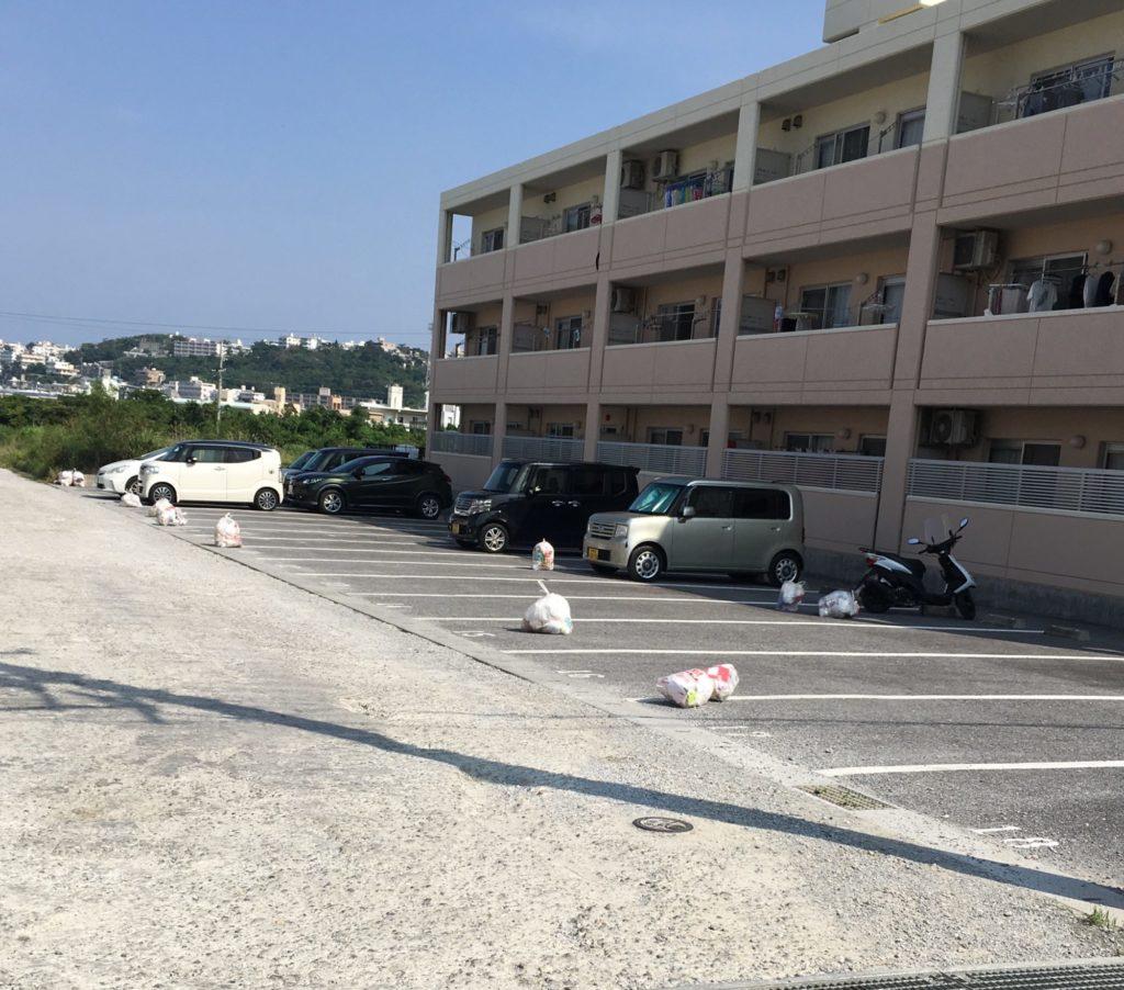 駐車場のごみ